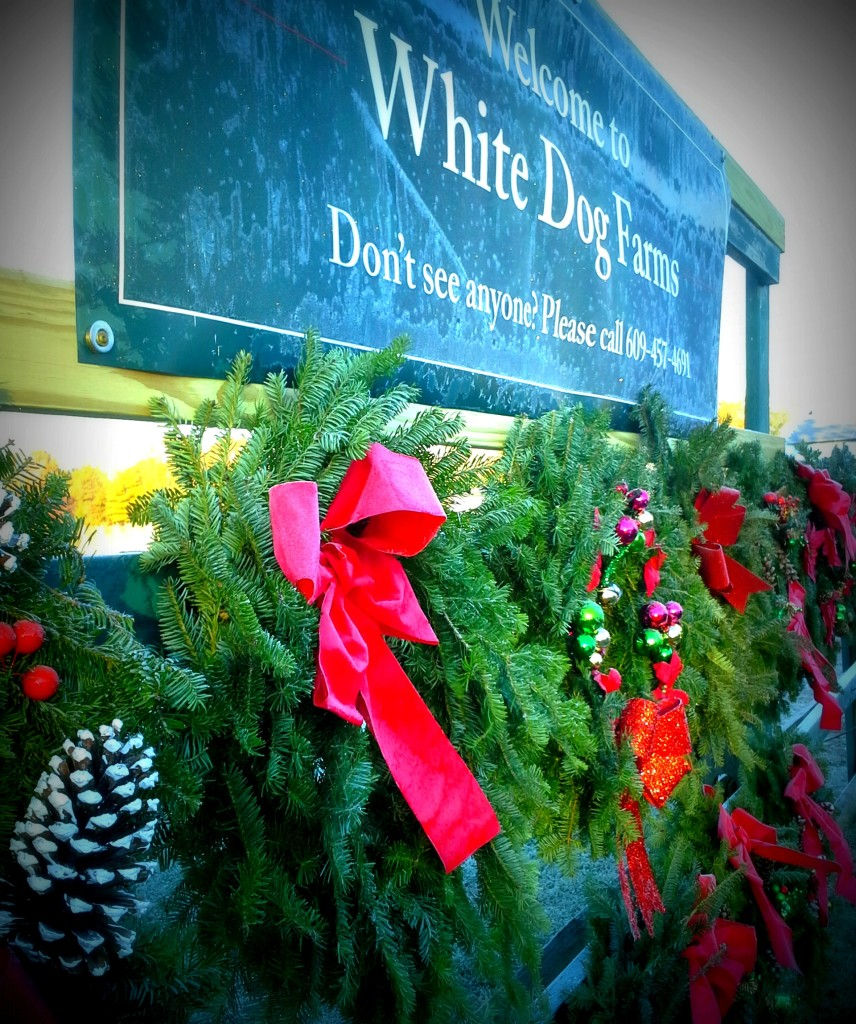 White Dog Farms Frosty Wreaths and Sign 11-24-17